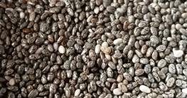 schwarze und weiße Chia Samen