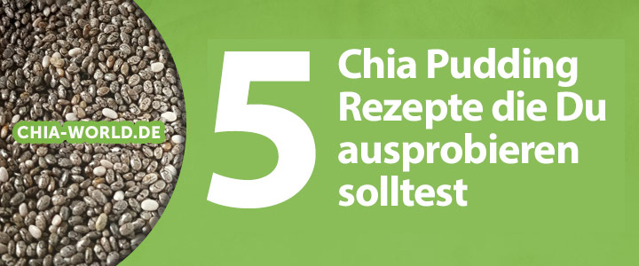 Chia Pudding Rezepte